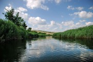 The Oskol River in June 2011 Topoli - Kupyansk
